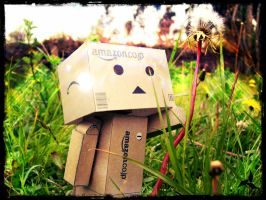 Danbo with dandelion by jostikero