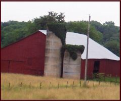 Ivy-Capped Silos by meljoy68