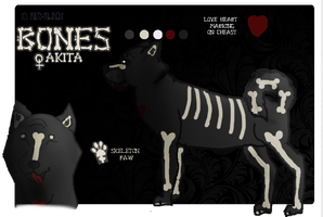 Bones Reference Sheet (OLD) by missy-midnight