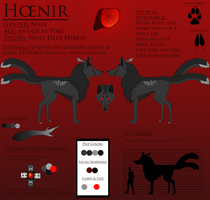Hoenir Reference Sheet 2013 by lucidcoyote