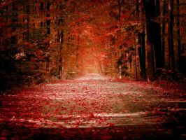 Autumn by sican