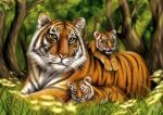 Tiger and cubs by Andes-Sudo