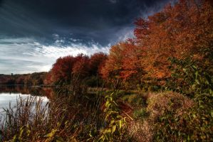 Fall Pond by LawrenceCreation