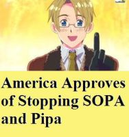 America Aproves of Stopping SOPA and PIPA by CareerFromDistrict4