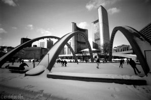 Nathan Phillips Square by evanjacobs