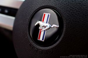 2005 Mustang Detail III by notbland