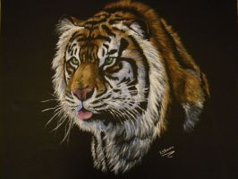Tiger painting. by MzJekyl