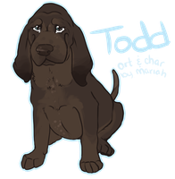 Todd - For Sale! *ended* by TheyCallDaWindMariah