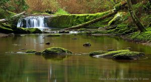 Middle Whatcom Falls II by La-Vita-a-Bella