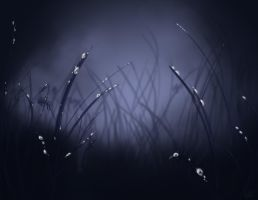 Fairy Grass by rogueXunited