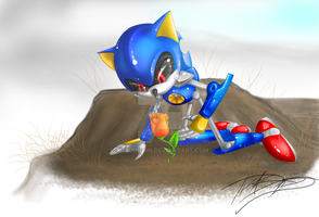 -Metal Sonic Contemplation- by Traconian