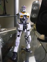 RG RX-78-2 White Unicorn WIP by lupesisagundam