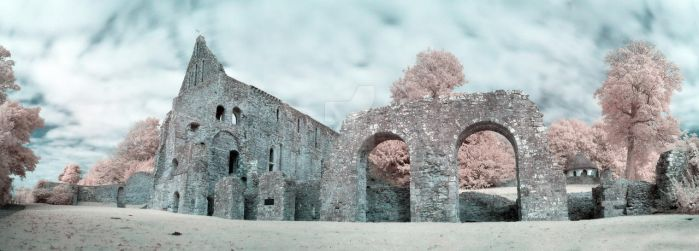 Battle Abbey 2 by wreck-photography
