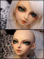 Face-up: Luts CP Breakaway '06 by asainemuri