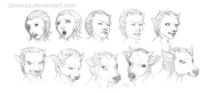 Cow Head TF 10 stage for Fairy-Fetish-Studio by Janexas
