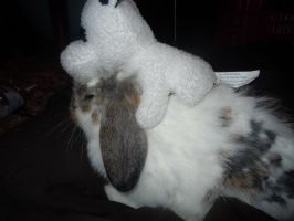 My cow riding a rabbit by Loveistheknife