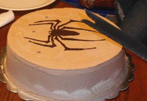 Spiderman Decal Cake by Qess