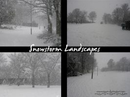 Snowstorm Landscape Pack by Neonescence