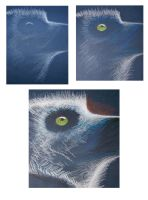 Lemur catta WIPs by philippeL