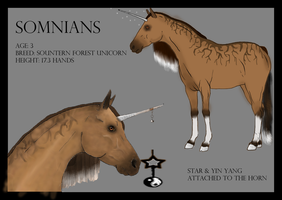 .:Somnians Ref Sheet:. by White-Wind1