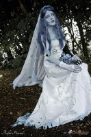 Emily - Corpse Bride Cosplay by BabiSparrow