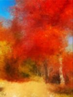 Autumnal Impression by fmr0