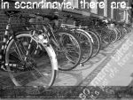So many bikes... by lucifer-likes-sweets