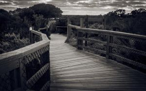 the path to nowhere by dabesses