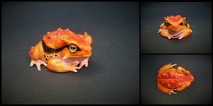Poison Dart Toad by BryrePatch