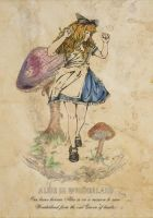Alice in Wonderland by Katie-Woodger