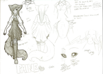 Paine's character sheet by PaineFullThrottle