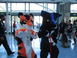 AX 2015 Day 1 Fursuitting by fangs211