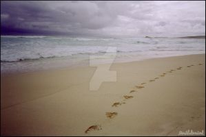 Footprints in the Sand by truthdenied