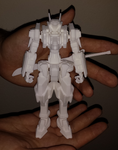 Hildebrandt 3D Print Model by TurinuZ