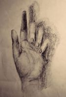Hand Study by Laura-Pietrusel