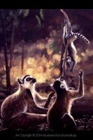 Leaping Lemurs by balaa