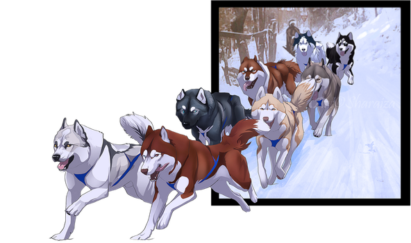 New sledding team... Will it work? by Sharaiza