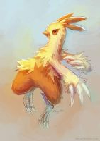 Combusken Second Sketch by eldrige