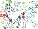 Leopolf Anatomy/Breed Sheet (READ DESC) by KamikazeOverMe