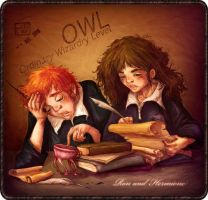 Ron and Hermione by la-maiii