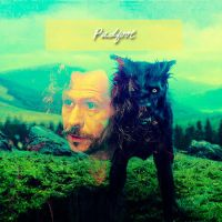 Padfoot by wolfram-and-hart2010