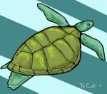 Sea Turtle for Cat by sneakiiwulf