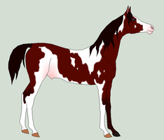 possible yearling 7 by horsecrazy2010