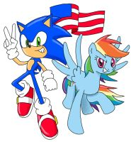 Sonic and RD Ask Blog: 4th of July 2013 by MegaArtist923