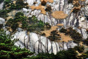 Huangshan -6 by DawnRoseCreation