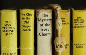 Mystery of the Ivory Charm by WildWinyan