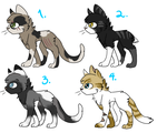 Cat Adopts! (CLOSED) by eagle564