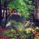 river-pond by Writto