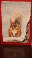 Red Squirrel by Sidonie