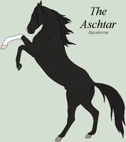 The Aschtar - Breed Sheet by DeLaMuerte-Stables